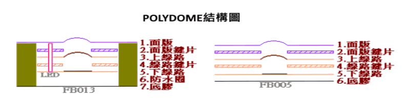 Polydome結構圖